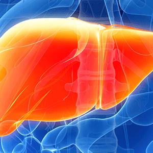 Liver Treatment in Medical Astrology